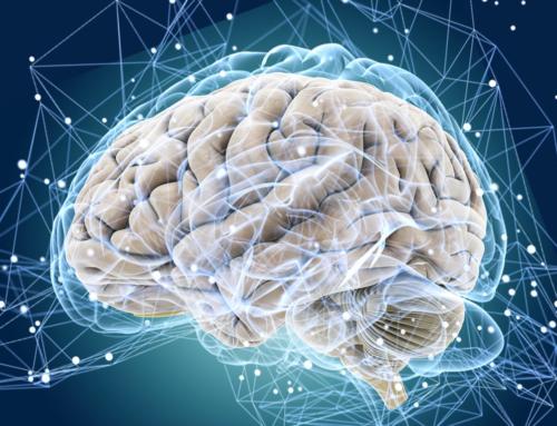 Развитие мозга через мелкую моторику